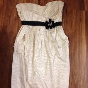 Torrid Ivory strapless zebra print dress